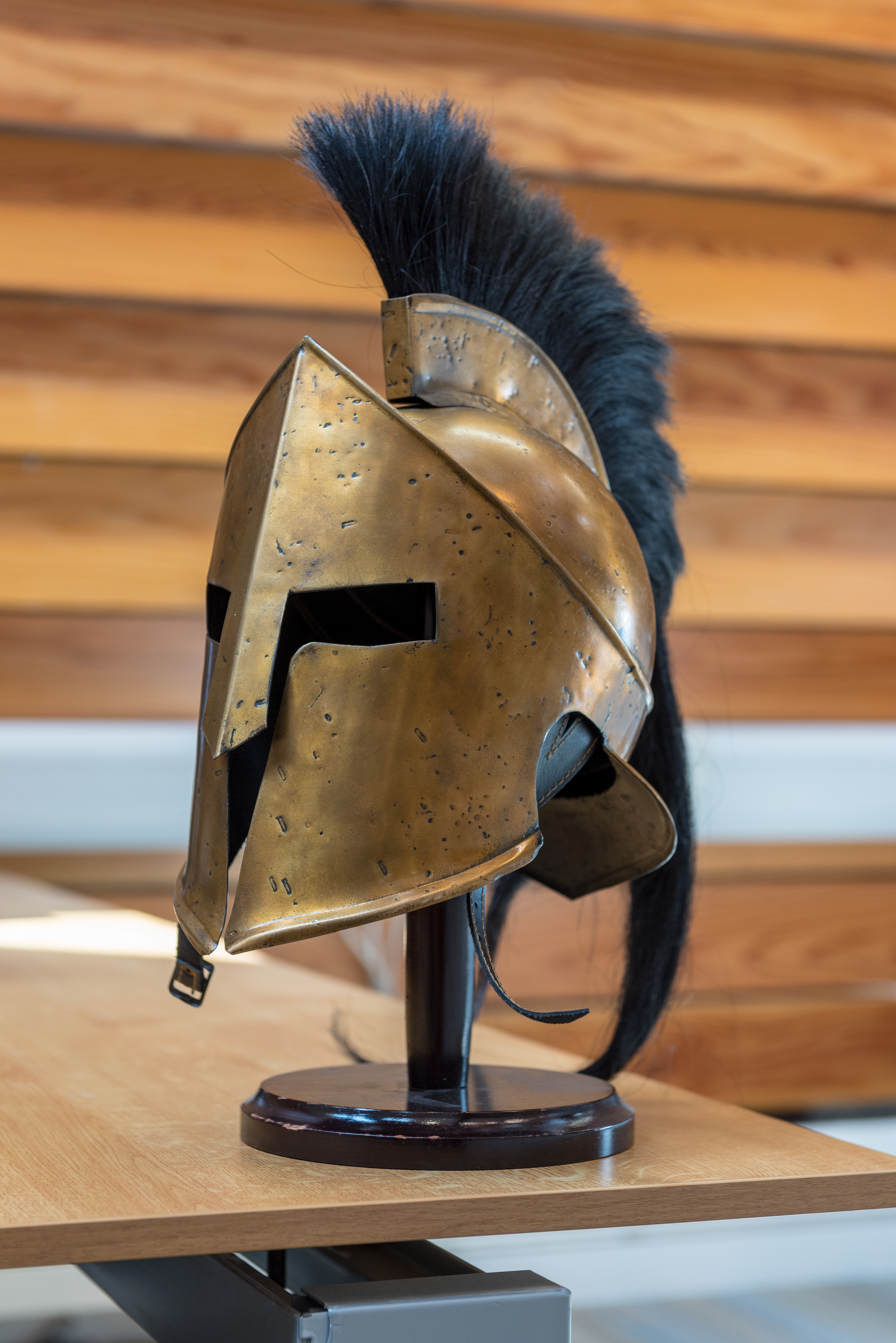 spartan helmet medium  stuart bebb  faculty of classics