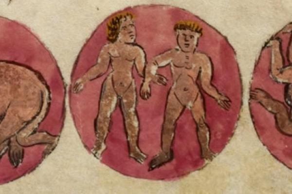 aristotleian biololgy